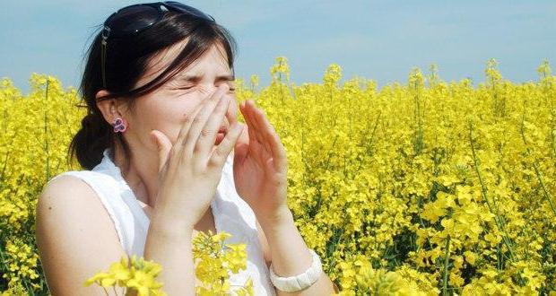 allergodil price