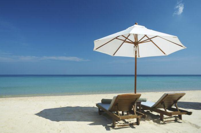 Порядок выплаты отпускных сроки три дня как считать