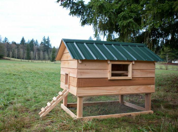 summer house for chickens with their own hands