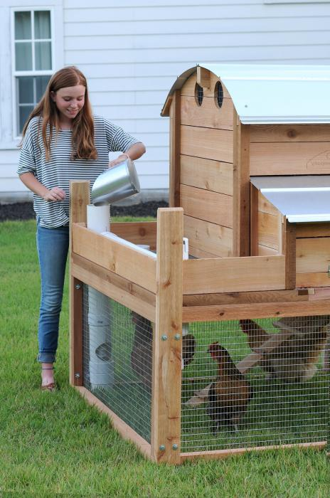 warm house for chickens