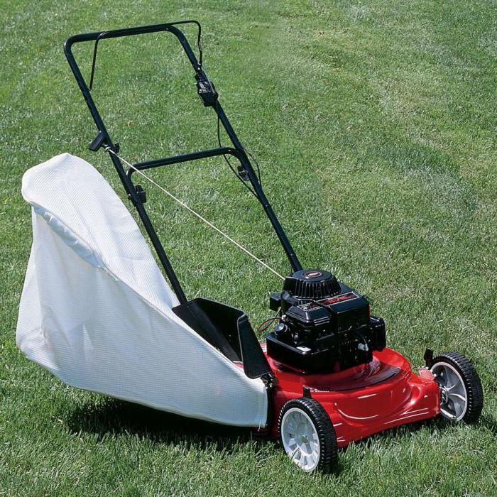 electric lawn mower mtd