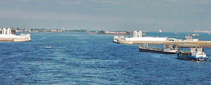 Bay of the Neva Bay