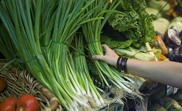 блюда из зеленого лука рецепты