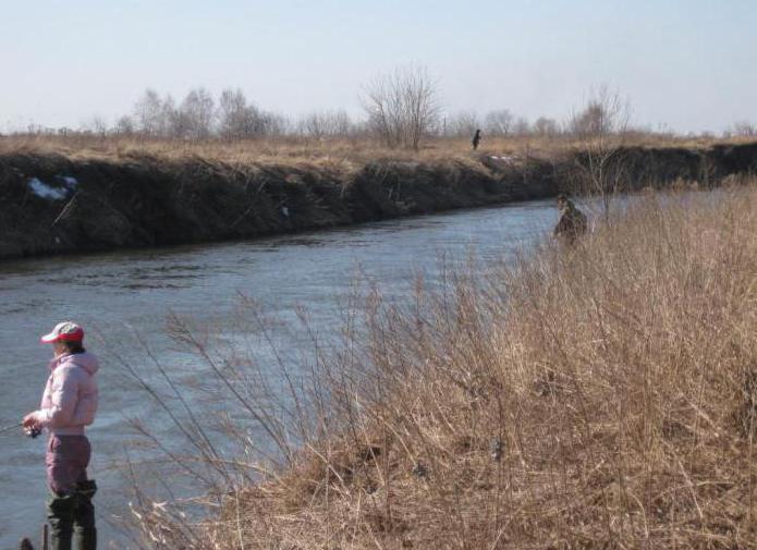 реки пехорка