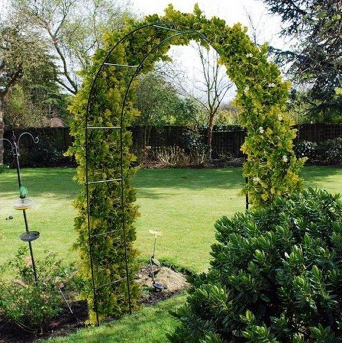 арка для винограда своими руками из металла