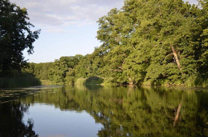 batyuzh river