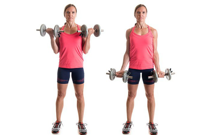 biceps triceps and trapezium