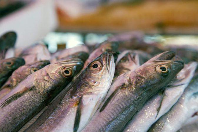 самоделки для рыбалки