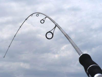 рыба вырезуб на дону