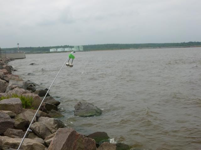 Fishing at the dam of the Finnish Zail place