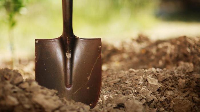 копать землю сонник