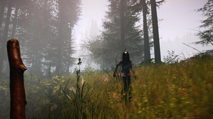 Игра The Forest: обзор, дата выхода, системные требования