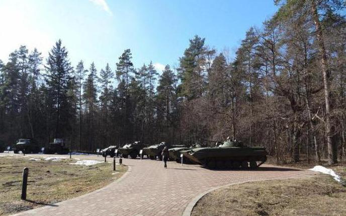 partisan glade Bryansk