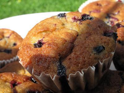 black currant muffins recipe with photos