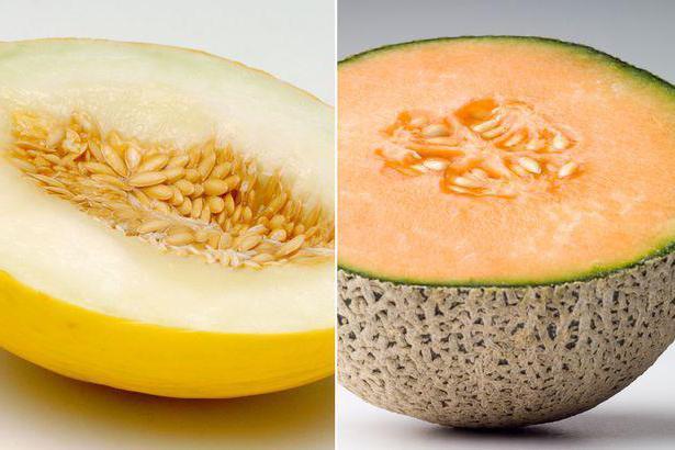 Похудение На Дыне Отзывы. Разгрузочный день: на дыне или на арбузе?