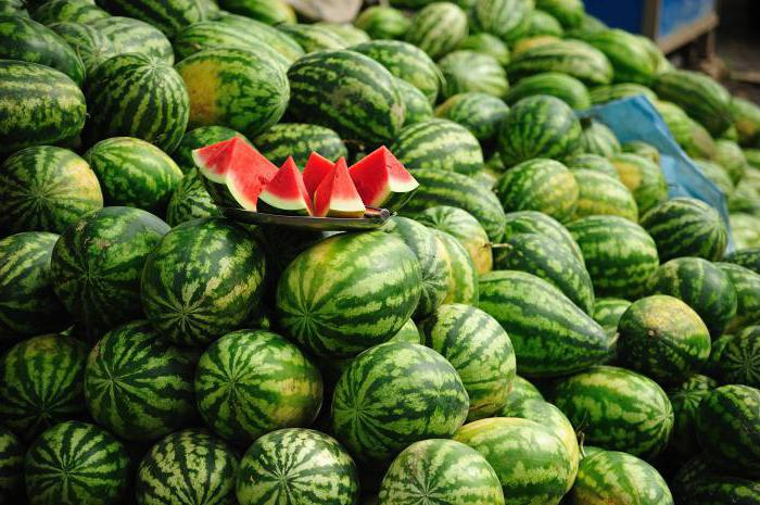 energy and nutritional value of watermelon