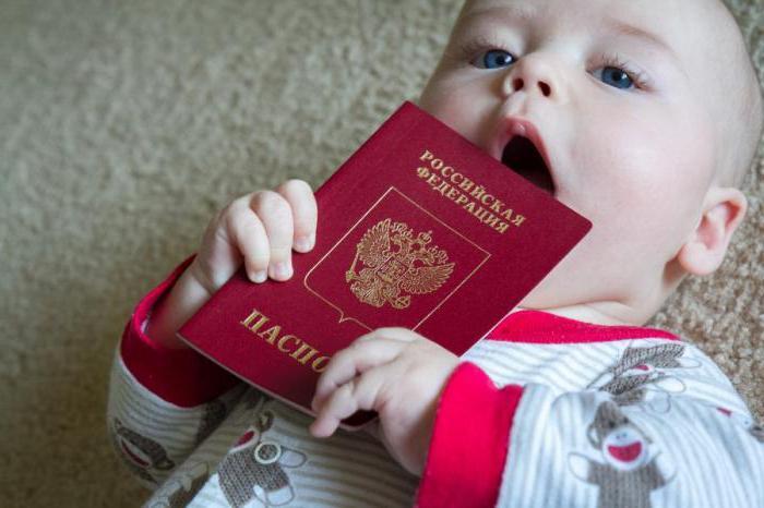 более гражданство украины для ребенка саженцы ореха