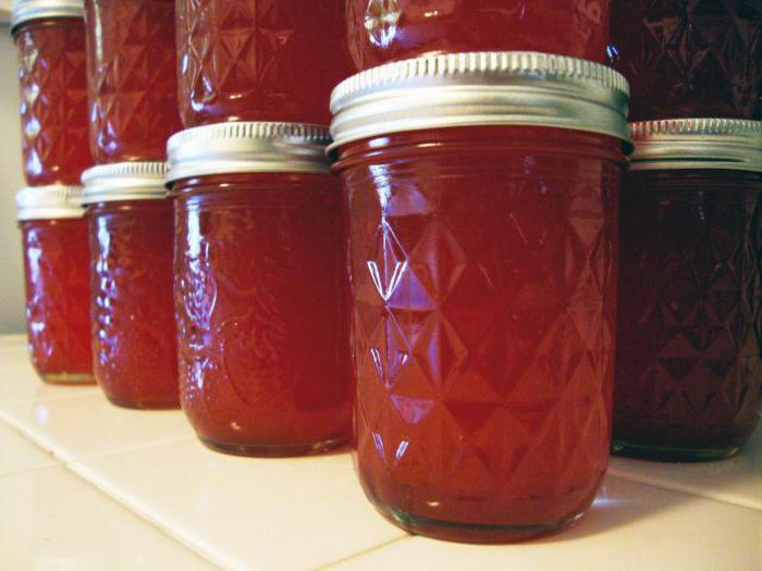 jelly of plum for the winter recipes