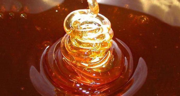 мед абхазский эвкалиптовый