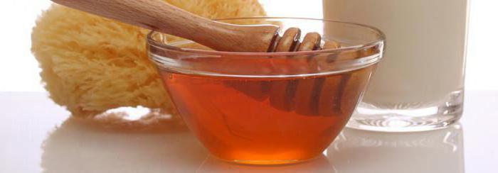 мед эвкалиптовый полезные свойства и противопоказания