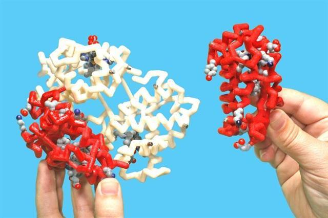 как понизить гемоглобин