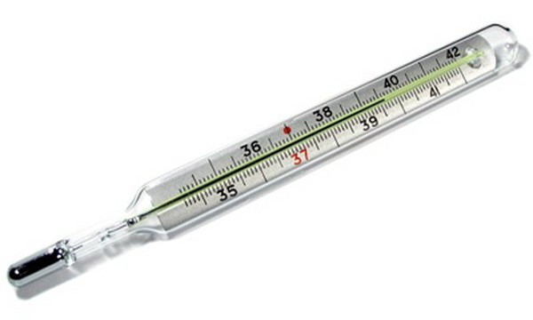crashed mercury thermometer in the apartment what to do