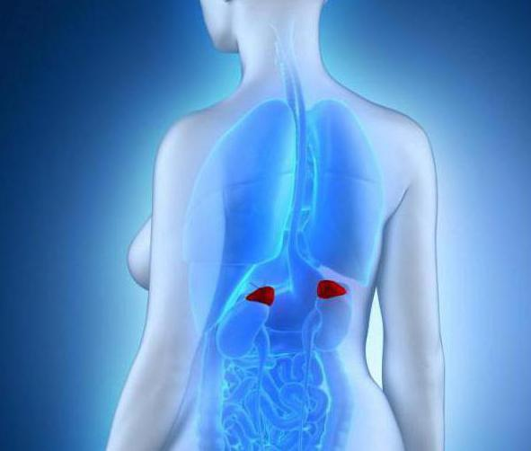 treatment of adrenal adenoma folk remedies the most effective