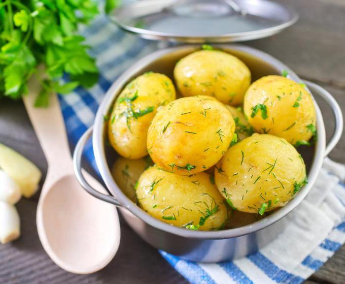 potato breeze variety description