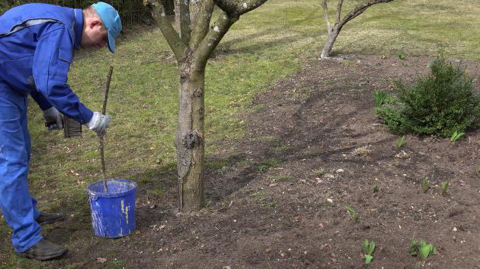 краска садовая для деревьев удача