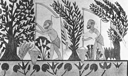 irrigation farming in ancient egypt