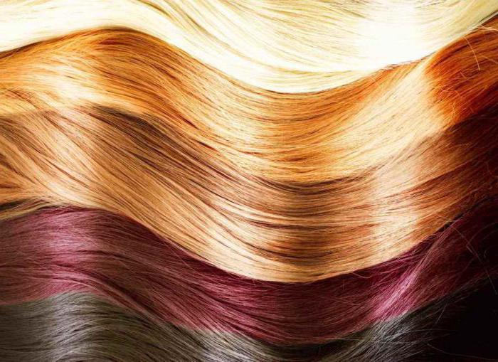 Kapous краска для волос инструкция по применению