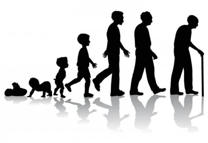 Определение возраста человека по внешнему виду