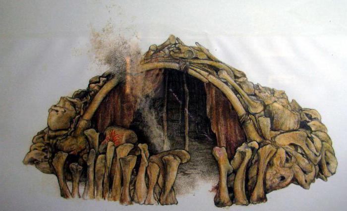 картинки жилище первобытных людей
