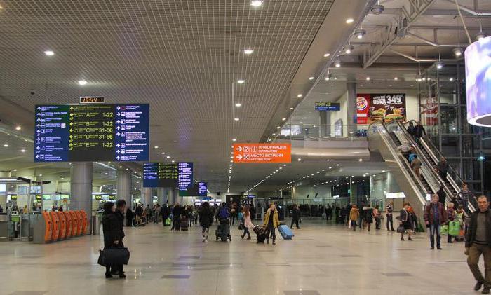 terrorist attack of 2011 Domodedovo