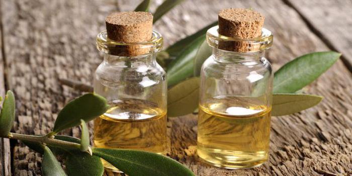 Как сделать масло чайного дерева 383