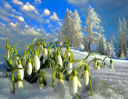 proverbs about seasons