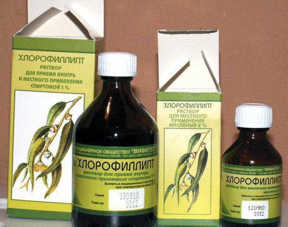 хлорофиллипт можно полоскать горло