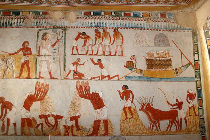 who paid taxes in ancient Egypt