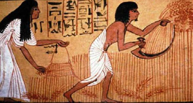 peasants lives in ancient egypt A modern visitor to ancient egypt would be struck by the youthfulness of the people ancient egyptians  and their peasants  women lived about five.