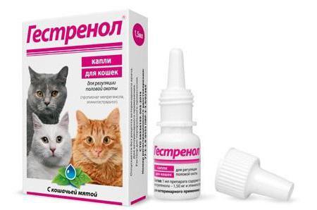 гестренол капли для кошек инструкция