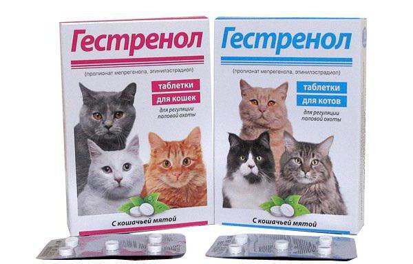 гестренол капли для кошек инструкция по применению
