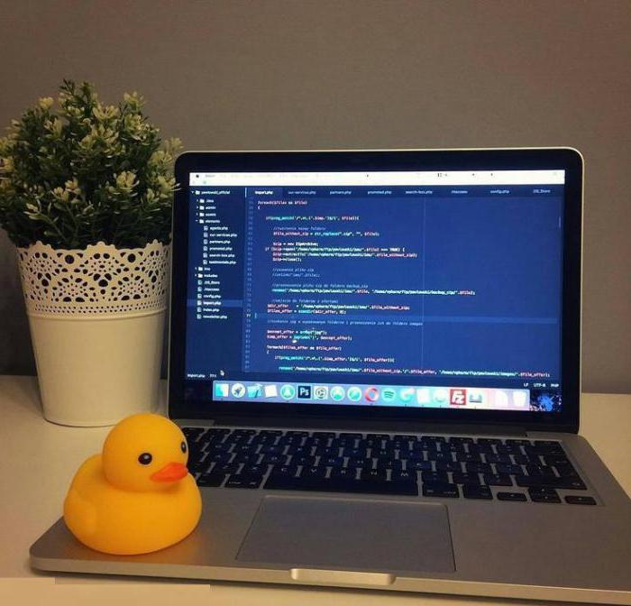 how to become a developer ios