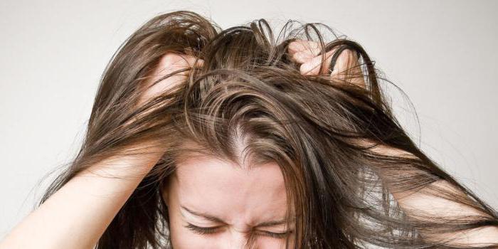 paronite lice lotion reviews