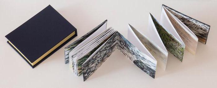 Книжка раскладушка своими руками из бумаги поэтапно 22