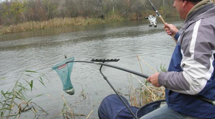 Fishing in Belgorod