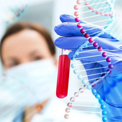 как сдать анализ на прогестерон и эстроген