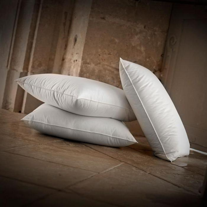 Pillows Swan Down Ivanovo