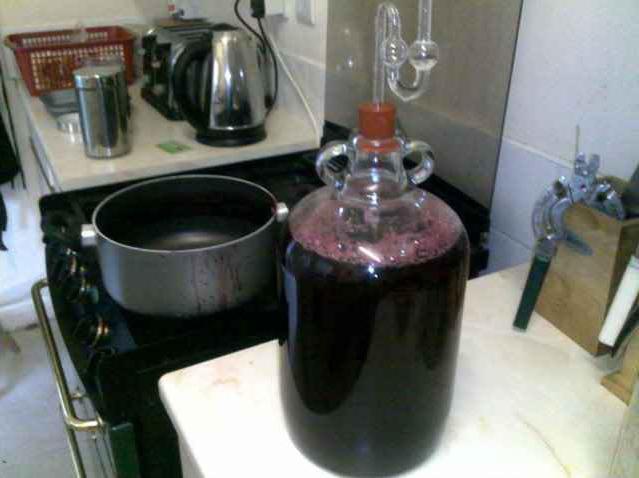 raisin homemade wine recipe