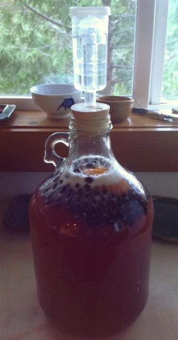 Recipe for homemade wine from fermented jam