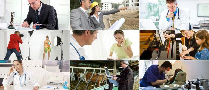 types of economic professional activity